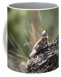 Coffee Mug featuring the photograph Golden Mantled Ground Squirrel by Margarethe Binkley
