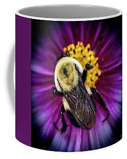 Brown Belted Bumble Bee Coffee Mug