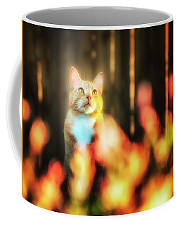 Golden Orange Tabby Coffee Mug
