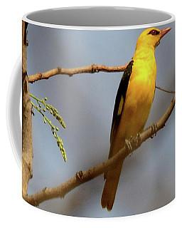 Golden Orioles Coffee Mug by Manjot Singh Sachdeva