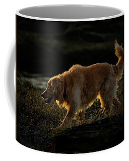 Coffee Mug featuring the photograph Golden by Randy Hall