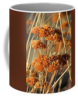 Golden Reach Coffee Mug