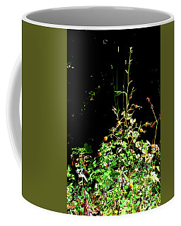 Golden Rose Hips Coffee Mug