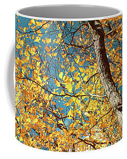 Coffee Mug featuring the photograph Golden Sassafras by Shawna Rowe