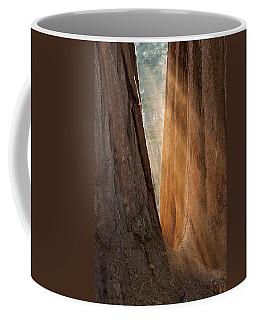 Golden Sequoia Coffee Mug
