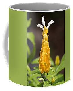 Coffee Mug featuring the photograph Golden Shrimp Flower by Sheila Brown