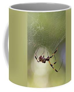 Golden-silk Spider Coffee Mug