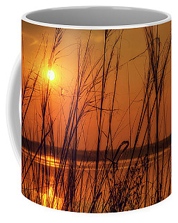 Golden Sunset At The Lake Coffee Mug