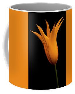 Golden Wonder Coffee Mug by Roy McPeak