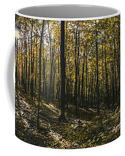 Golden Woods Coffee Mug