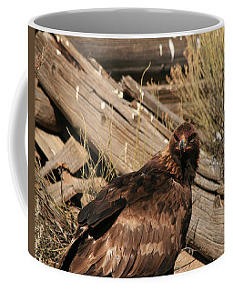 Goldeneagle1 Coffee Mug