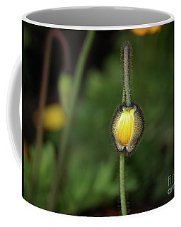 Goldengatefloral01 Coffee Mug