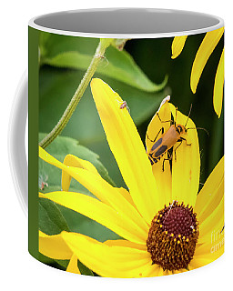 Coffee Mug featuring the photograph Goldenrod Soldier Beetle by Ricky L Jones