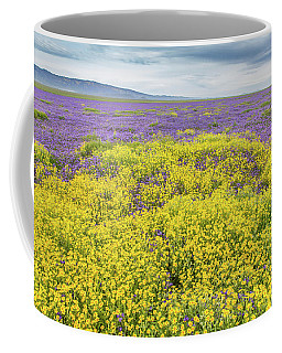Coffee Mug featuring the photograph Goldfield And Phacelia by Marc Crumpler