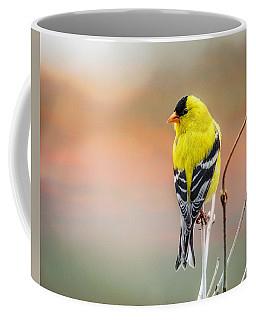 Goldfinch At Sunrise Coffee Mug by Susan Capuano