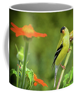 Goldfinch Feeding In A Garden Coffee Mug