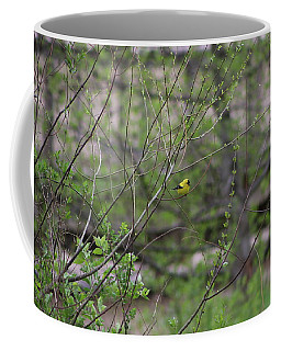 Coffee Mug featuring the photograph Goldfinch Of Lake Redman by Donald C Morgan