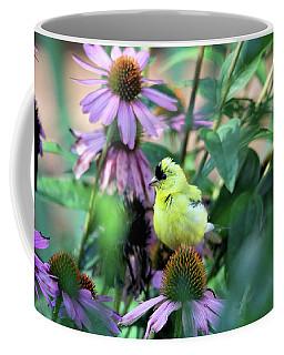 Goldfinch On Coneflowers Coffee Mug