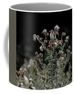 Goldfinch Sitting On A Thistle Coffee Mug