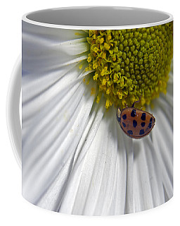 Coffee Mug featuring the photograph Good Luck by Elsa Marie Santoro