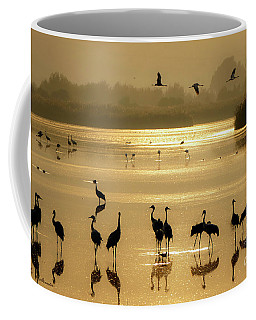 Good Morning Chula Lake Coffee Mug