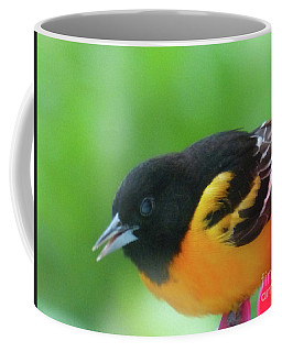 Coffee Mug featuring the photograph Good Morning Mr. Oriole by Rosanne Licciardi