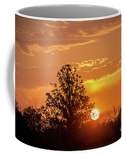 Coffee Mug featuring the photograph Good Morning Sunshine by Cheryl Baxter