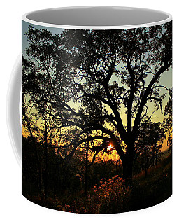 Coffee Mug featuring the photograph Good Night Tree by Viviana  Nadowski