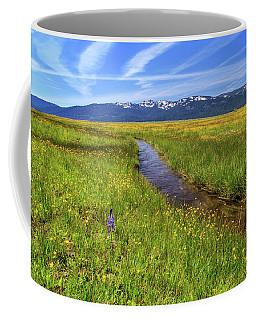 Coffee Mug featuring the photograph Goodrich Creek by James Eddy