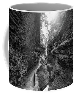 Gorge Trail At Watkins Glen Bw Coffee Mug
