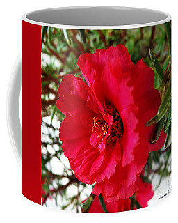 Coffee Mug featuring the photograph Gorgeous by Jasna Dragun