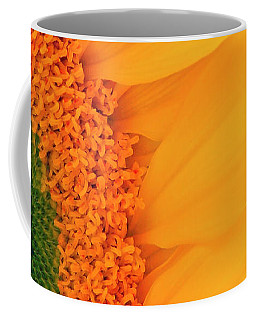 Gorgeous Sunflower Macro Coffee Mug