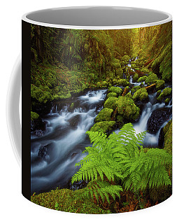 Coffee Mug featuring the photograph Gorton Creek Fern by Darren White