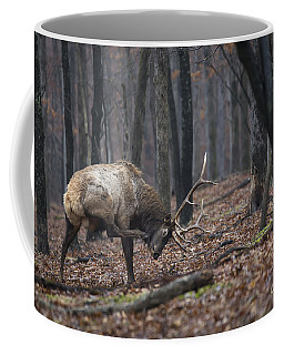 Got A Scratch Coffee Mug by Andrea Silies