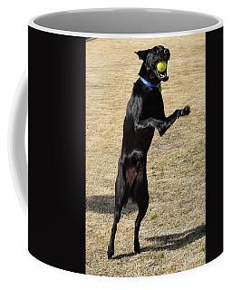 Gotcha Coffee Mug