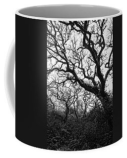 Gothic Woods II Coffee Mug by Marco Oliveira