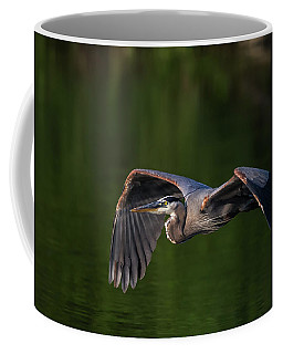 Coffee Mug featuring the photograph Graceful Flight by Everet Regal
