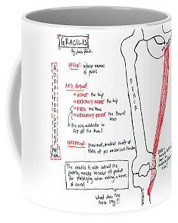 Gracilis Coffee Mug