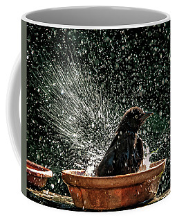 Coffee Mug featuring the photograph Grack Bath Flower Pot by Jim Moore