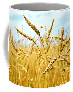 Grain Field Coffee Mug