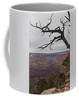 Coffee Mug featuring the photograph Grand Canyon Branches by Ana V Ramirez