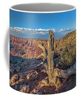 Grand Canyon Old Tree Coffee Mug