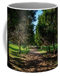 Coffee Mug featuring the photograph Grand Pathway - The Hermitage by James L Bartlett
