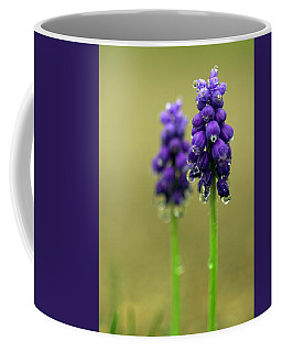 Coffee Mug featuring the photograph Grape Hyacinth by Joseph Skompski