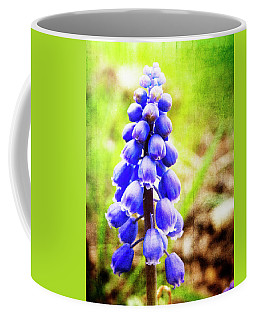 Coffee Mug featuring the photograph Grape Hyacinth by Julia Wilcox
