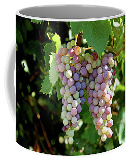Grapes In Color  Coffee Mug