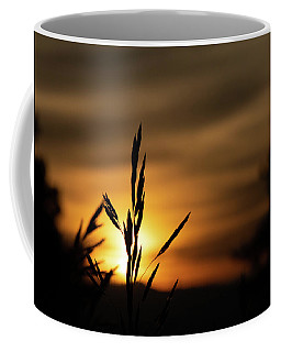 Grass At Sunset Coffee Mug