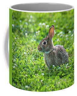 Coffee Mug featuring the photograph Grass Hoppers by Bill Pevlor
