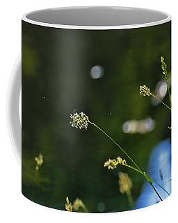 Grass Pods Coffee Mug by Kay Lovingood