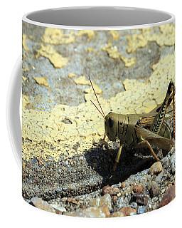 Grasshopper Laying Eggs Coffee Mug
